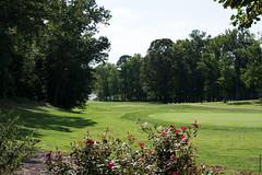 Hyperfocal (qualityandme) Tags: hyperfocal eisenhowergolf annearundel d7100 golf