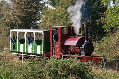 IMG_3289 (Hampton & Kempton Waterworks Railway.) Tags: darent devon arrives loop