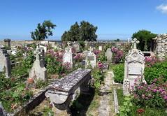 The churchyard of Ste-Radégonde church in Talmont-sur-Gironde (Sokleine) Tags: churchyard cemetery cimetière tombes graves gravestones tombstones flowers fleurs church steradégonde talmont talmontsurgironde 17 charentemaritime poitoucharente france frenchheritage