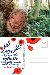 Post Art Northwest | February 2017 (emilyfrances5) Tags: postartnorthwest emilymccann mishazadeh postcard art postcardart seattle photographer seattlephotographer seattleartist pnwartist pnwphotographer pacificnorthwest green heart love rumi log ferns poetry forest flowers artifactuprising mail mailart snailmail blue red handlettering quote collaboration light flare sunflare
