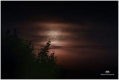 SEPTEMBER 2016  NM1_0804_015089-24 (Nick and Karen Munroe) Tags: nickmunroe nickandkarenmunroe nickandkaren karenick23 karenick karenandnickmunroe karenmunroe karenandnick munroedesignsphotography munroedesigns munroephotography munroe nikon nikond750 nikon70200f28vrii nikon1424f28 brampton ontario canada moonlight moon moonrise moonshot moonlitsky moonlit moonshine moonshots nightsky nighttime nightshots nightphotography lunar