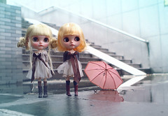 Playful Raindrop&Penny Precious