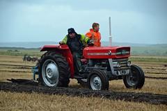 (Zak355) Tags: butevintageclub ploughing ploughingmatch kingarth bute rothesay isleofbute scotland scottish tractors farming farm vintagetractors masseyferguson