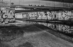 Graffiti pidgeons B&W (jasonmgabriel) Tags: bw white black reflection water night liverpool graffiti canal leeds pidgeons towpath