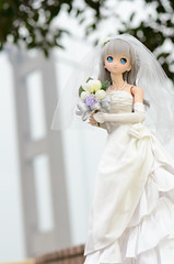 DSC_8087 (TonyBSD) Tags: wedding hk girl hongkong nikon doll dress bjd yukiko dslr dd dollfie volks   tsingmabridge    tsingyi  dollfiedream tingkaubridge lantaulink     lantaulinkvisitorscentre d7000