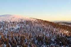 Meran2000 (Pernin) Tags: snow ski alps nikon 2000 neve alto sci merano adige meran ortler d3000