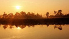 Face the Sun (Paul Beentjes) Tags: netherlands sunrise nederland heemskerk zonsopkomst landschapspark assumburg