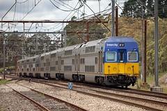"W535 Approaching Bell (Trent ""Raichase"" Nicholson) Tags: bell bluemountains interurban intercity cityrail vset railcorp"