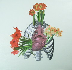 """One Heart A Day"" -Series http://www.etsy.com/shop/CAUSNFX (michiejefferson) Tags: flowers fish tree bird nature rose butterfly insect heart butterflies sealife valentine angels anatomy oddities oddity cherubs anatomicalheart medicalart"