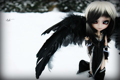 Lto (Konato) Tags: white snow black angel wing pullip custom custo darke dashka lto seila konato