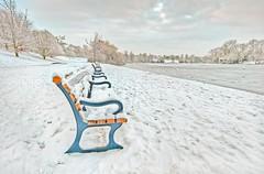 Solitude (James Waghorn) Tags: winter england lake snow tree ice clouds bench countryside kent nikon solitude top sigma ultrawide hdr isolated maidstone lightroom motepark sigma1020 cs6 d5000 blinkagain bestofblinkwinners