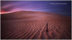 Gunyah Motion (Dylan Toh) Tags: photography nationalpark sand dunes australia dee coffinbay everlook gunyah ☆thepowerofnow☆ southaustraliam