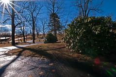 Laurel Hill Cemetery (Bud in Wells, Maine) Tags: winter sun reading massachusetts newengland laurelhillcemetery