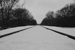 Train tracks in the snow (MattSpence156) Tags: uk trees winter sky blackandwhite bw snow black cold tree rural forest train woodland landscape countryside woods nikon track snowy traintracks railway line bandw whitesnow treeline wintersday traintrack railwaytrack snowylandscape snowyday railwaytracks coppice trainline earlswood nikond3200 whitesky coldday overcastsky metaltracks overcastday cloweswood snowontheground d3200 metaltrack snowysky ruralline snowontrainline