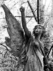 Highgate Angel... (A-Lister Photography) Tags: london grave statue angel known lumix tomb victorian panasonic highgatecemetery also dmczs3 dmctz7 adamlister alisterphotography