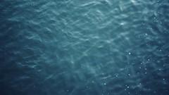 let the water drag you (thisisforlovers) Tags: blue water azul río river drag agua poetry poem waves peace olas bratislava espuma poesía poema dragby bratislawa