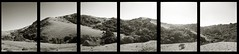 Wildcat canyon hexaptych (efo) Tags: california bw panorama home 35mm berkeley richmond hills elcerrito halfframe multiframe wildcatcanyon olympuspend2 hexaptych