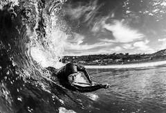 Surf @ Scripps (Laurent_Imagery) Tags: ocean winter sea portrait bw white surf pacific surfer board tube pipe barrel wave surfing spray surfboard leash splash swell wetsuit jolla lightroom sansan diegola shorela jollacaliforniascrippsbeachcoastactionsportextremewaterhousingsplfisheyenikond200culturelifestyleblack