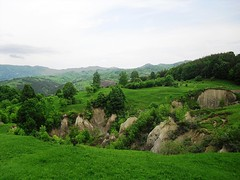 A green landscape (explored h. #216) (Ramona R***) Tags: trees verde grass rboles meadow hills arbres prado prairie 1001nights prato colline rvores collines copaci dealuri pajiste 1001nightsmagiccity photographyforrecreation