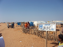 Civilians caught between Mali terrorists, troops | المدنيون محاصرون بين الإرهابيين والجيش في مالي | Des civils pris entre les terroristes et l'armée au Mali