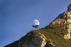 IMG_2386 Heavy load (jaro-es) Tags: españa mountain mountains nature canon mond natur natura luna bergen montañas naturesfinest naturewatcher eos450 naturemaster blinkagain vigilantphotographersunite vpu2 vpu3 vpu4 vpu5 vpu6 vpu7 vpu8 vpu9 vpu10