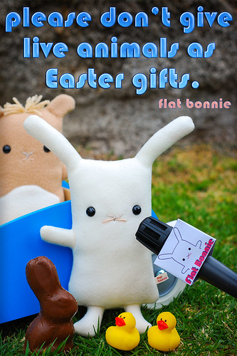 Easter message from Flat Bonnie