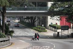 Where is that footbridge??? ... Central, Hong Kong (Daryl Chapman Photography) Tags: china road bridge people silly danger canon hongkong kid dangerous footbridge think central brain 100mm busy lazy 7d stupid f28 foolish hongkongpark