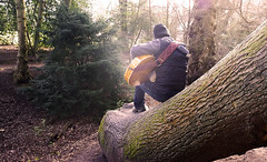 Doing it in Styal... (~Shurlee~) Tags: trees musician sunlight playing man male guy back woods cheshire guitar sony treetrunk 24mm sat styal blubellwood nex7