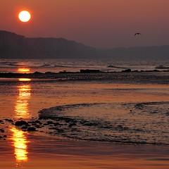IMG_8977v4-st2 (FredBoug) Tags: sunset sea roses mer les de soleil coucher frederic bougon veuleslesroses veules fredboug