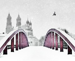 Red bridge (Micha Koralewski - mobile photography) Tags: winter red snow bird cathedral iphone pozna snowdaze iphoneart iphoneography iphoneonly snapseed lightism