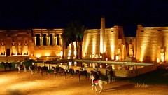 Horse Acrobats in 1001 Nights (abrideu) Tags: show egypt sharmelsheikh folklore 1001nights spectacle platinumheartaward abrideu mygearandme mygearandmepremium mygearandmebronze mygearandmesilver mygearandmegold dcmtz20 vigilantphotographersunite vpu2 vpu3 vpu4 horseacrobats