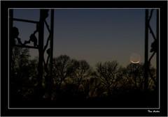 Comet Watching (tla.hiker) Tags: moon crescent comet panstarrs