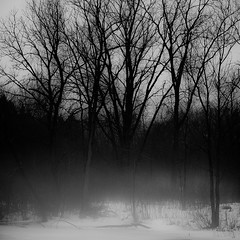 Fog Over Frozen Pond 003 (noahbw) Tags: trees winter bw mist snow monochrome misty fog forest square landscape blackwhite woods nikon foggy explored hellernaturecenter d5000 noahbw