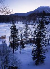 暂别阿寒湖的天与树。真的还能再来? (kwspecial) Tags: 645 北海道 日本 旅游 风景 摄影 彩色 胶片