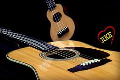 iUke mini Ukulele & Westernguitar [1] (FHgitarre) Tags: ukulele guitar acoustic gitarre iuke westernguitar westerngitarre miniukulele