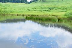 11Tonomine Highland (anglo10) Tags:   japan field