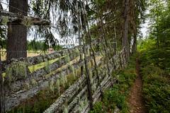 Bergsbo_160730_015 (Kristoffer J) Tags: bergsbo sderberget natur snedhage grdesgrd senhage sverige sweden