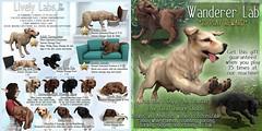 JIAN Lively Labs @ The Arcade September (Key) ([JIAN]) Tags: secondlife mesh pet pets dogs dog canine labrador golden retriever companion newrelease thearcade arcade kaliafirelyte jian gacha key
