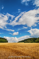 Field after harvest (Foto Jussi) Tags: field straw soil crop reap pilgrimage leaden agriculture earthy hay life compostela wheat inland grass claim threshing rural clouds cloud harvest harvesting country landscape background cloudy countryside finland north