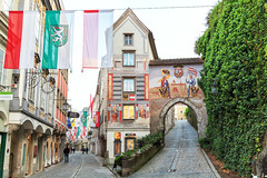 160520_194203_AB_4152 (aud.watson) Tags: europe austria steyr ennsriver steyrriver oldcity citygate coatofarms flag