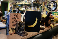 International Banana Museum (Dan   Hacker   Photography) Tags: california saltonsea bombaybeach internationalbananamuseum fujichrome fujifilm fujix100t 35mm desert travel