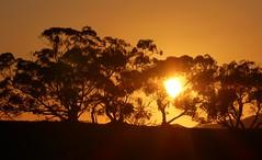Flinders Sunset (padraic_koen) Tags: sunset flindersrange southaustralia