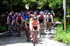 Tours of Japan 2016 Mino Stage 01 (T Kato) Tags: toursofjapan fujifilm roadrace bike japan gifu mino yukiyaarashiro arashiro