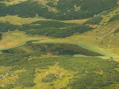 P8200082 (turbok) Tags: berge bergsee donnersbach landschaft planneralm wasser