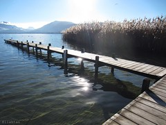 So pure (nathaliedunaigre) Tags: pure puret purity lac lake lacdannecy ponton eau water transparence transparency limpide paysage landscape winter hiver light lumire sun soleil montagnes mountains reeds joncs
