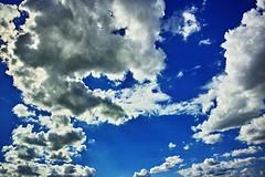 20160830_DP0Q5469 (NAMARA EXPRESS) Tags: landscape sky cloud blue weather deepsky deepblue evening summer fine outdoor color foveonclassicblue toyonaka osaka japan foveon sigma dp0 quattro wide ultrawide superwide namaraexp