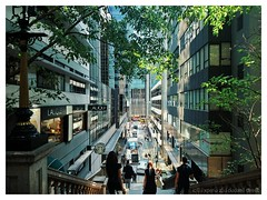 Duddell Street, Central (mr ivanchan) Tags: central hongkong duddellstreet sunlight trees leaves green staircase sign building office windows glass street sony z5 xperiaz5