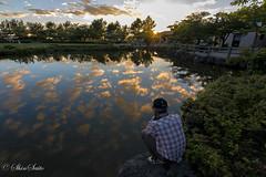 Excitement (shin4433) Tags: refraction pond japan sky sunset landscape water cloud capture nature nikon d500 explorer tokina 1120mm f28 pro dx evening        superwideangle lens color