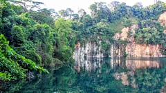 Bukit Timah Reserve (cattan2011) Tags: lake singapore bukittimahreserve reflections traveltuesday travelblogger travel landscapephotography landscape