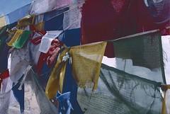 Ladakh 2005 (patrikmloeff) Tags: indien inda inde indian indisch asien asia asian asiatisch erde earth terre monde welt world ferien urlaub vacances holiday holidays beautiful buddhismus buddhism ladakh analog analouge minolta sommer summer ete littletibet gebetsfahnen prayerflag prayerflags travel traveling reise reisen voyage